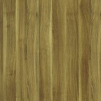 Ecco Veneer Interior Doors Options: Honey Acacia