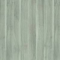 Ecco Veneer Interior Doors Options: Silver Acacia
